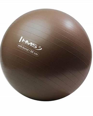 Gymnastický míč HMS YM02 65 cm bronzový
