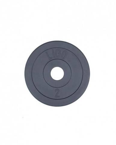 Kotúč odhadzovací - 2 kg