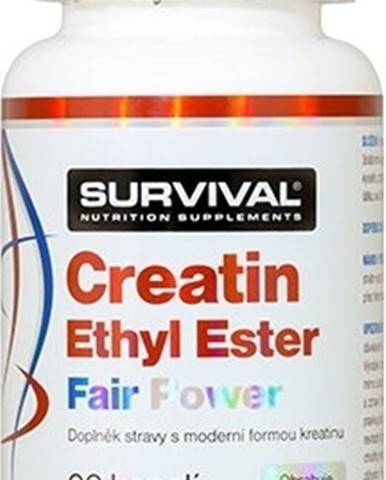 Survival Creatin Ethyl Ester Fair Power 90 kapsúl