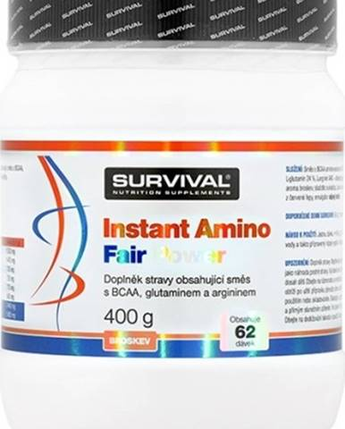 Survival Instant Amino Fair Power 400 g variant: ananás
